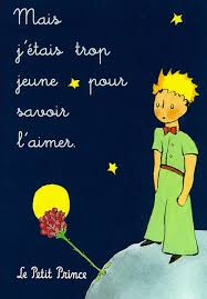 best the little prince el principito images le petit prince