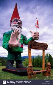 the famous giant gnome nanoose bay bc vancouver island british columbia canada world s largest