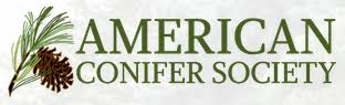 Image result for american conifer society logo