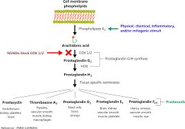 Nsaid Conversion Chart Nonsteroidal Anti Inflammatory Drugs Nsaids