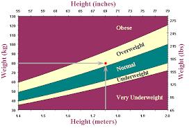 Ht Chart Adult Bmi Chart