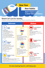 a new year house cleaning resolution that i can keep clorox regular bleach fact sheet