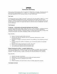 Best Executive Summary Example Business Plan Plans Analyst Resume