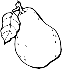Small Picture Pear coloring page Free Printable Coloring Pages
