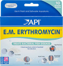 Api E M Erythromycin Freshwater Fish Bacterial Disease Medication 10 Count