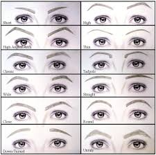 The Beauty Bunny Brows 101