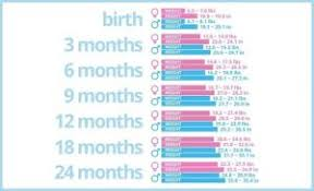 Average Baby Weight Growth Chart Whats The Average Baby Weight Growth By Month Health