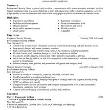 Pretty Sample Resume Government Relations Contemporary Example