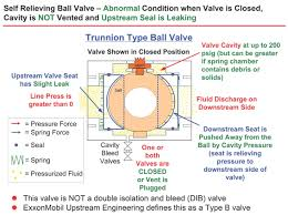 Cameron Ball Valve Torque Chart True Meaning Of Double Block And Bleed