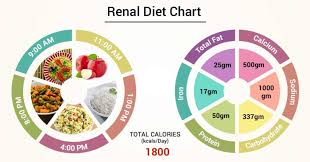 Chronic Kidney Disease Food Chart Diet Chart For Renal Patient Renal Diet Chart Lybrate