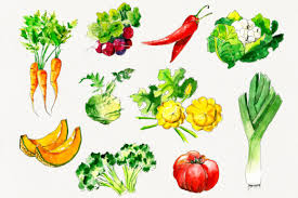 Download icons in all formats or edit them for your designs. Fresh Vegetables Watercolor Set Graphic By Hannayelsukova Creative Fabrica