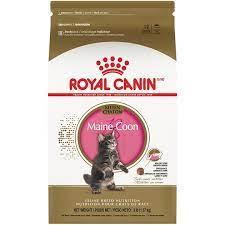 royal canin maine kitten dry cat