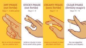 24 Accurate Pregnancy Period Color