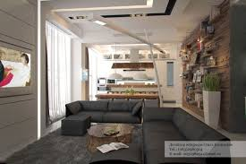 modern apartment living room ideas black. Small Rustic Modern Studio Apartment Living Room With Kitchen Interior Decorating Ideas Black Architected By Ola O
