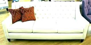 best couches for dogs sofa fabric couch dog owners new or upholstery lovely leather furniture da best furniture for pet owners couch dog fancy leather