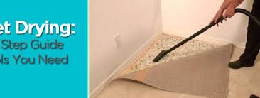 carpet drying step by step guide and