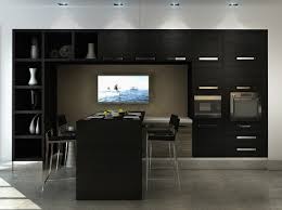 Modern Black Kitchen Cabinets Considering The Dark And Cool Black Kitchen Cabinets