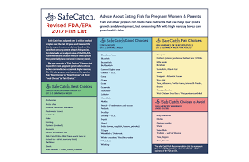 Safe Catch Blog Covering Topics From The Oceans To Pregnancy