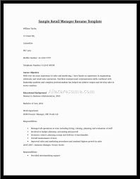 Examples Of Resumes Great Executive Resume Example Sample Cfo