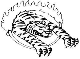 Tigre Del Circo Disegni Da Stampare E Da Colorare