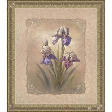 vivian flasch iris scroll framed print art 13734712