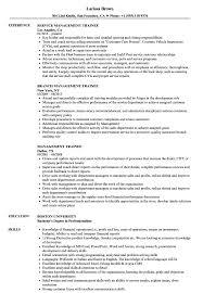 Sample Resume Management Management Trainee Resume Samples Velvet Jobs