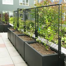 s standard planter