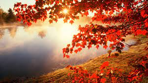 Autumn Backgrounds for Windows 10 (Page ...