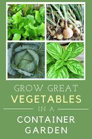 grow in a container garden