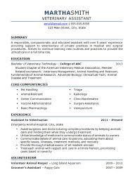 Animal Pharmaceutical Sales Sample Resume Mesmerizing Veterinary Technician Resume Templates Pinterest Resume