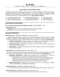 Flash Programmer Resume. resume layout download resume template ...