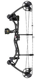 Bear Archery Apprentice 3 Black Shadow Package