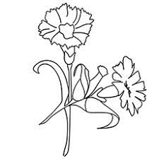 coloring pages for kids flowers.  Pages The Carnation Coloring Pages Intended For Kids Flowers