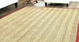 chenile jute rug chenille with border custom natural fiber rugs awesome area ideas hand pottery barn