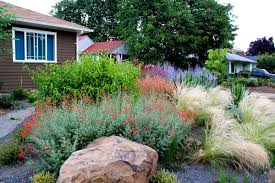 drought tolerant garden. Drought-Tolerant Garden With Gravel, Portland, Oregon Drought Tolerant G