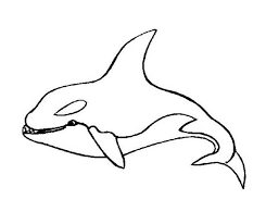Small Picture Killer Whale Orca Sea Animals Coloring Page Download Print