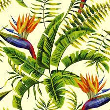 Peinture D T Tropic Mod Le Vectoriel Sans Soudure Avec Des
