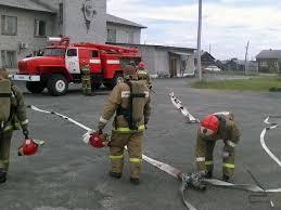 Отчет по практике В пожарной части введение Образец proshivka dlia samsung s5570i skachat