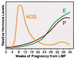Morning Sickness Chart Sick Of Being Pregnant Psychology Today