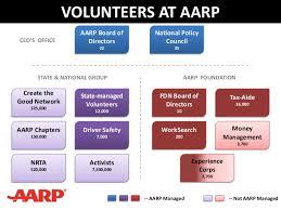 Volunteer Program Org Chart