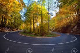 Light Colored Asphalt Splendid Image In The Forest Colored Leaves Asphalt Road Sunset