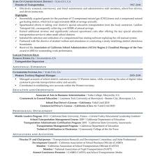 Resume Professional Writers Reviews Resume Template Professional Writers Unusualeviews financial 66