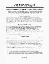 Executive Summary Example Resume Weraz