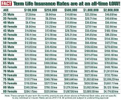 Missouri Travel Insurance Quotes Mesmerizing Travel Life Insurance Quotes