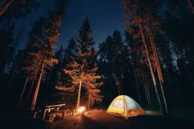 camping in the woods at night. Fine Woods Inside Camping In The Woods At Night M