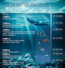 How Deep Does The Ocean Actually Go 9gag