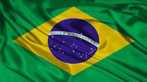 شركات الاتصالات في البرازيل - تجارتنا