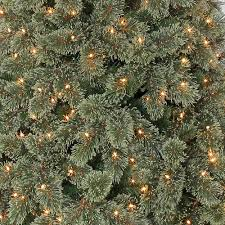 Shop Holiday Living 55ft PreLit Spruce Artificial Christmas Pre Lit Spruce Christmas Tree