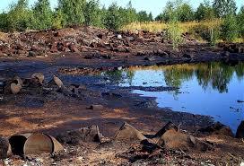 Водная нечисть самые грязные водоемы России
