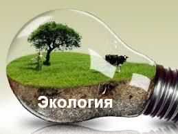 Экологические проблемы Ярославской области загрязнение водоемов и  Курсовые контрольные работы по предмету Экология